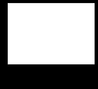 Animat Media